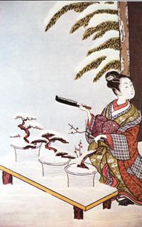 Early Bonsai