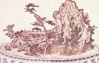 Bonsai the beginning