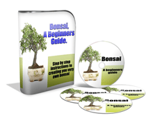 Bonsai Video Course